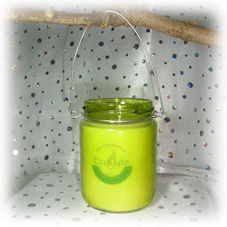 G008 Citronella candle with wire hanger